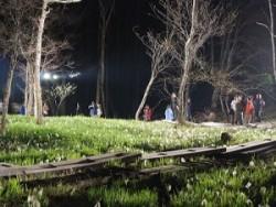 水芭蕉の森・夜